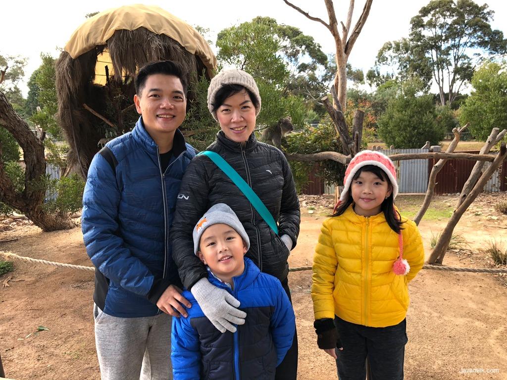Javamilk family dengan koala