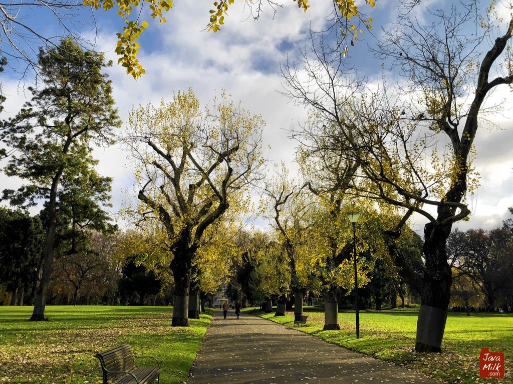 Carlton Garden