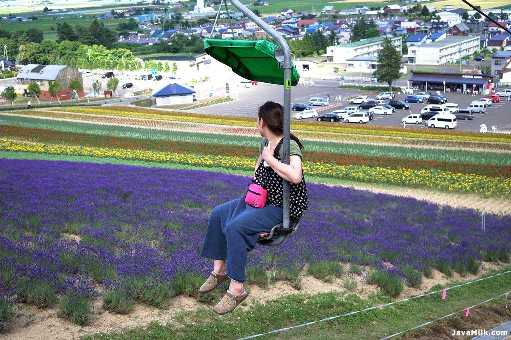 Asyik menikmati kebun lavender dari ski chair
