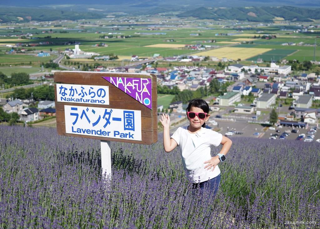Nakafurano Lavender Park