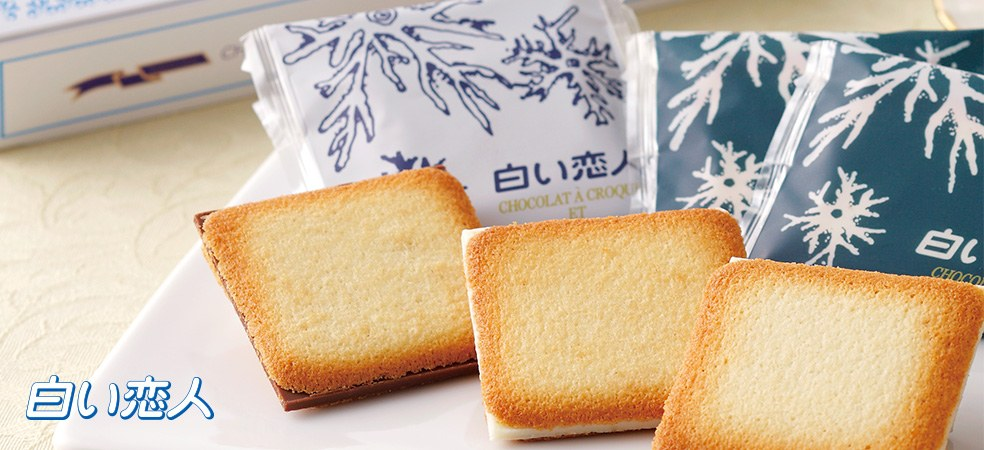 Chocolate Biscuit Shiroi