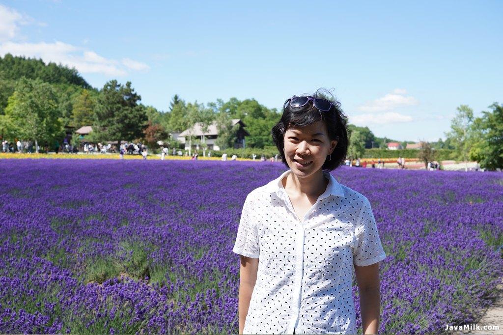Hamparan bunga lavender